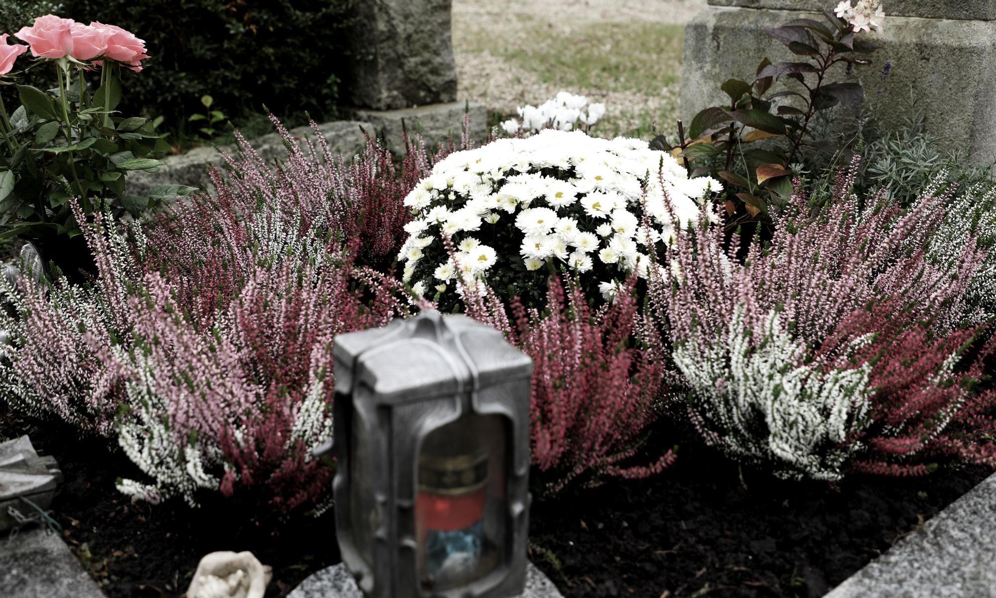 191101_Allerheiligen_foto-grab-innstadtfriedhof-SH