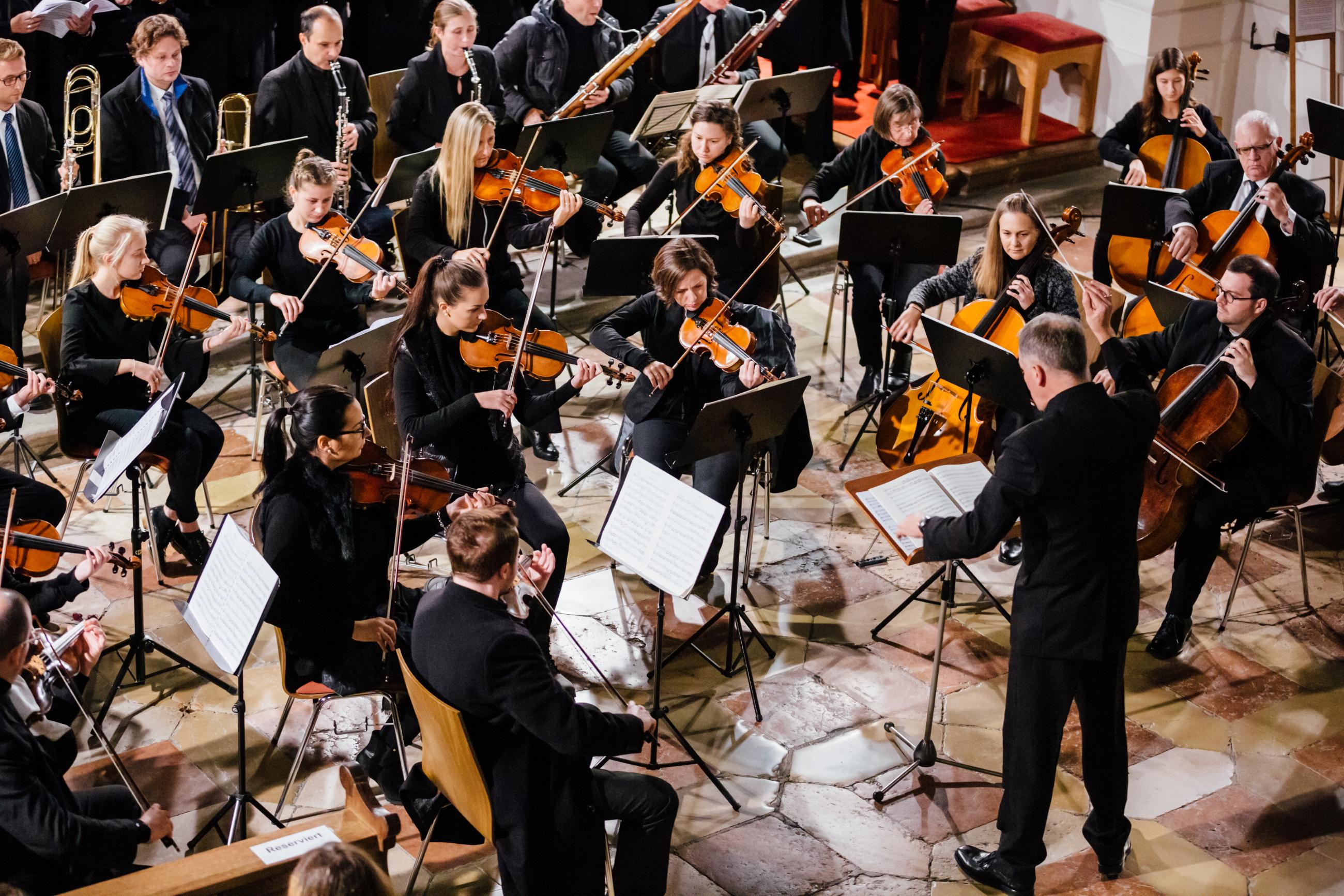 2019 Domorchester 1