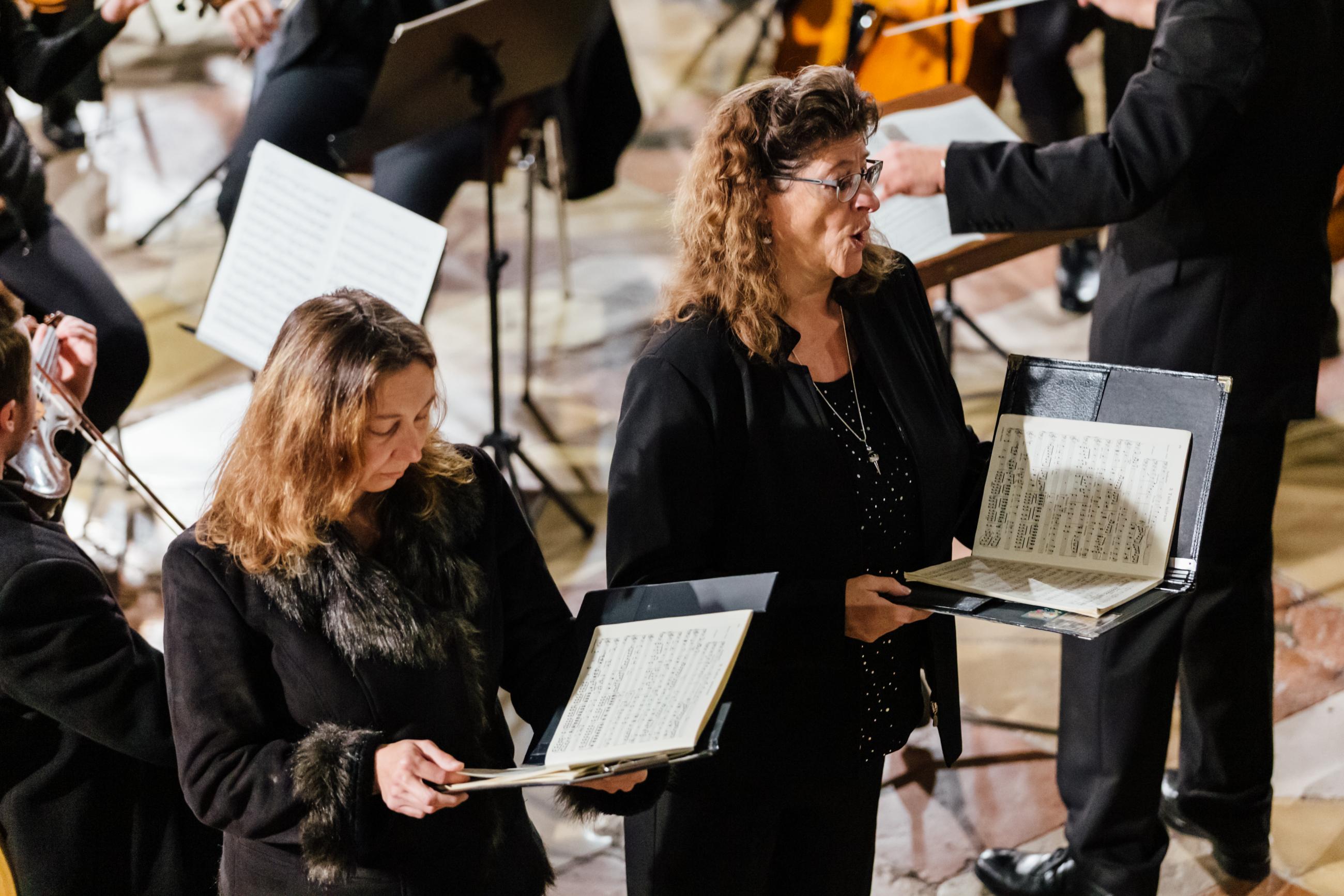 2019 Domorchester 4