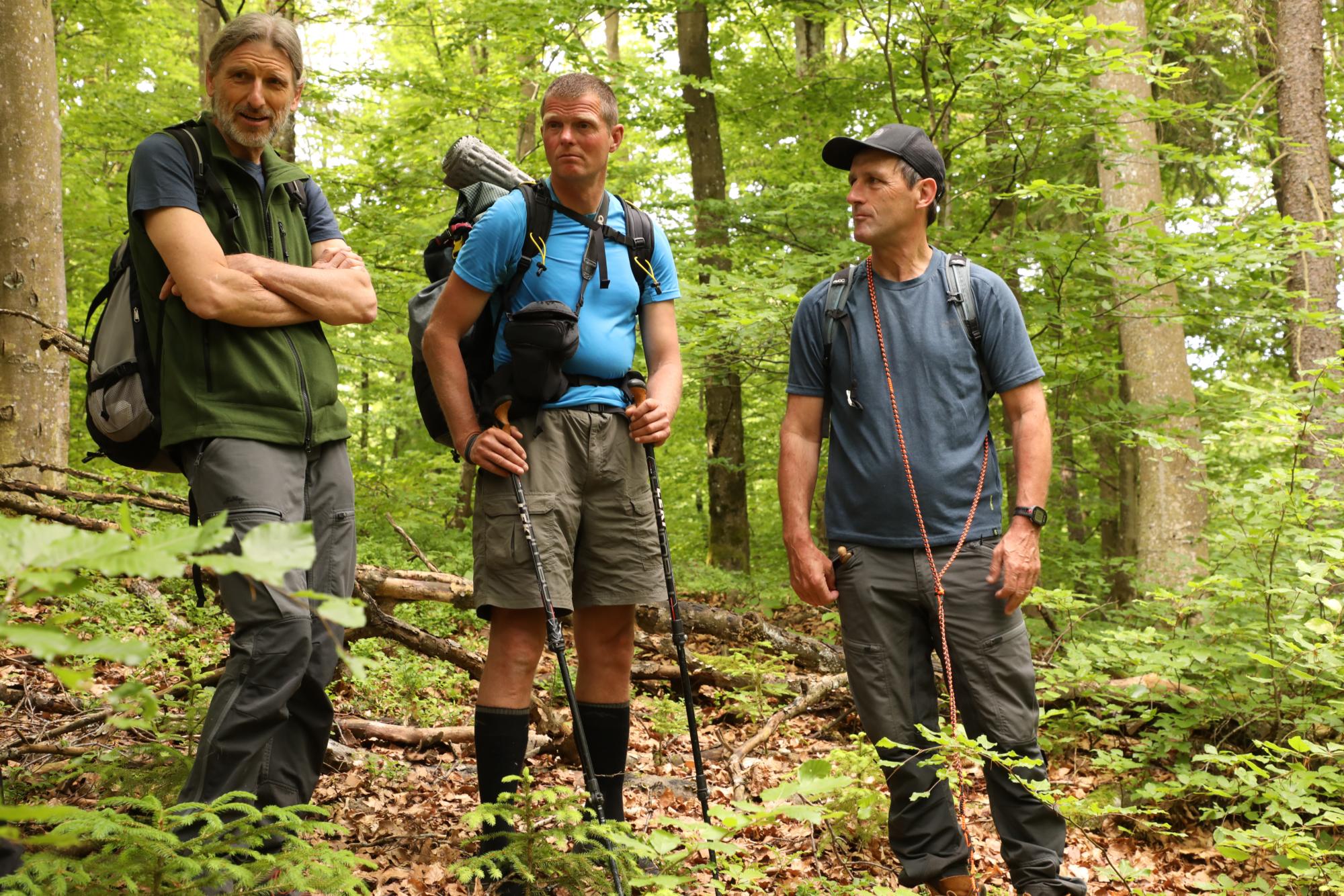 210604 Lebendiger Wald 3