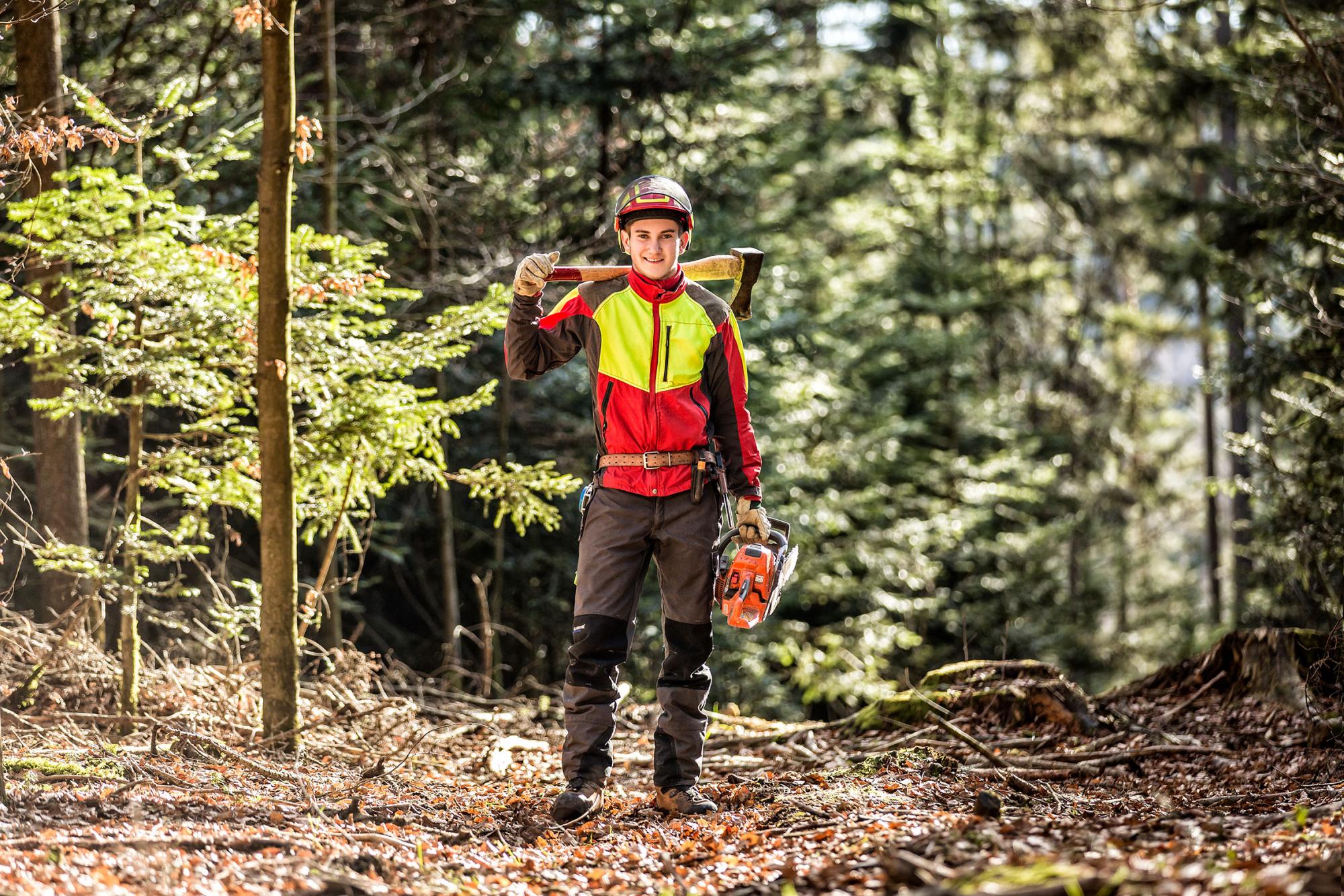 Ausbildung Waldwirtschaft