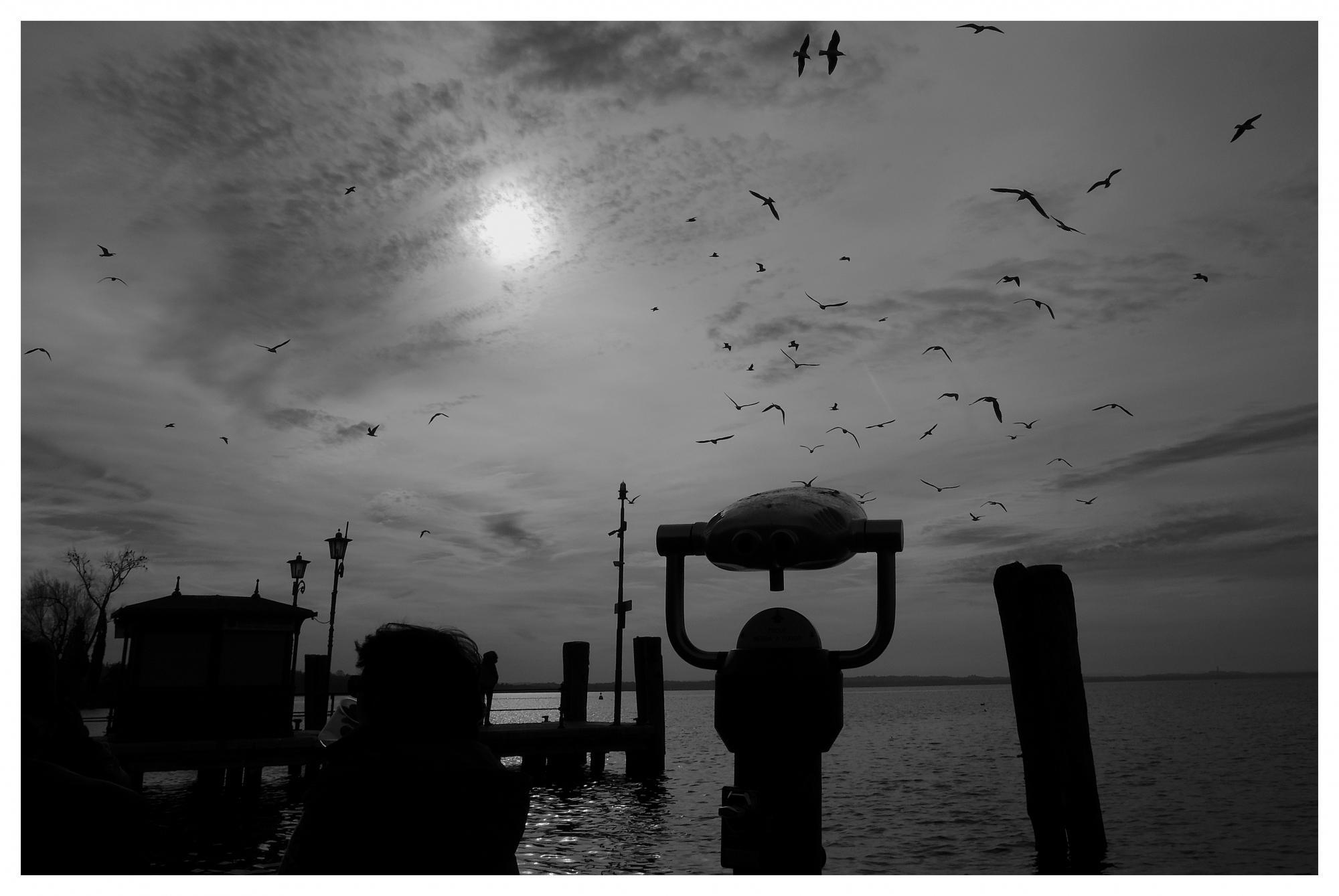 Sirminone lago di Garda gennaio 2020 I