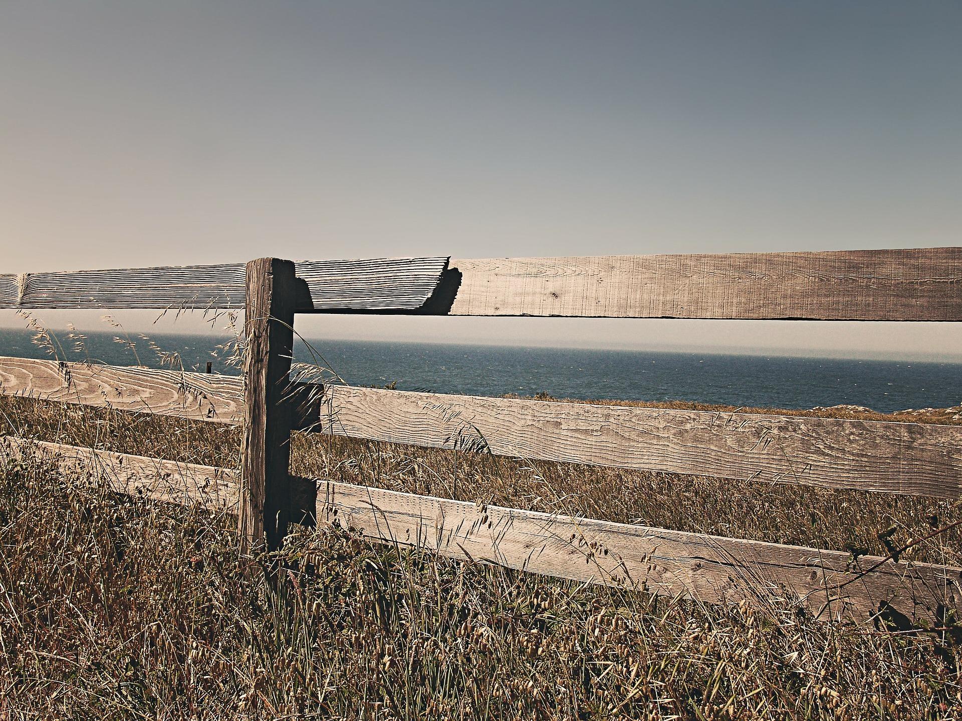 Fence 238475 1920 Ryan Mc Guire auf Pixabay