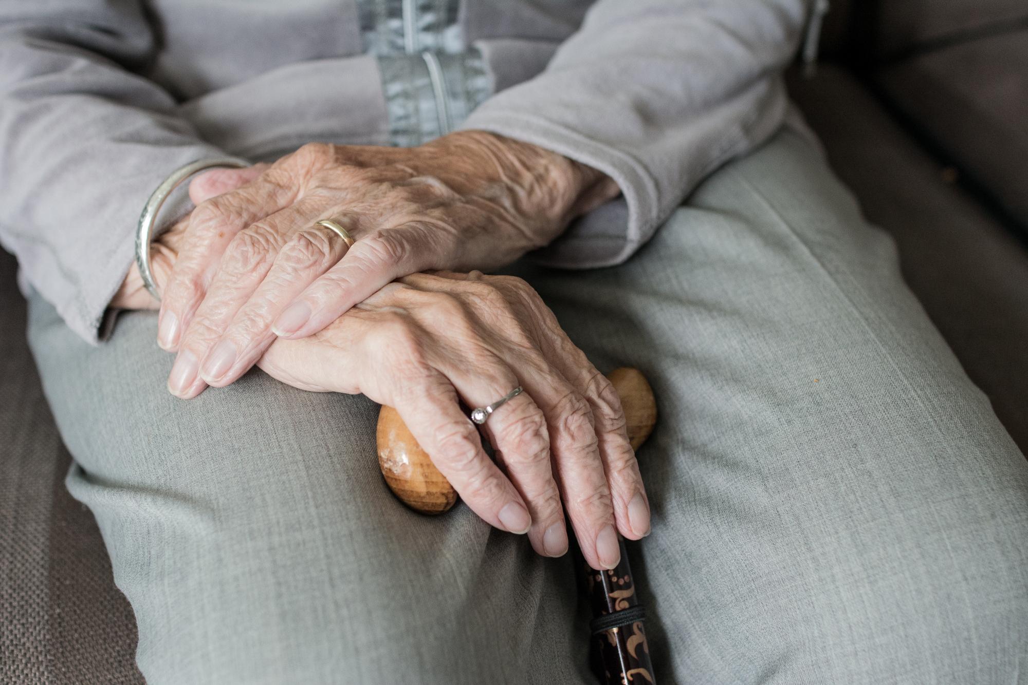 Hand 3666974 Bildquelle Bild von Sabine van Erp auf Pixabay