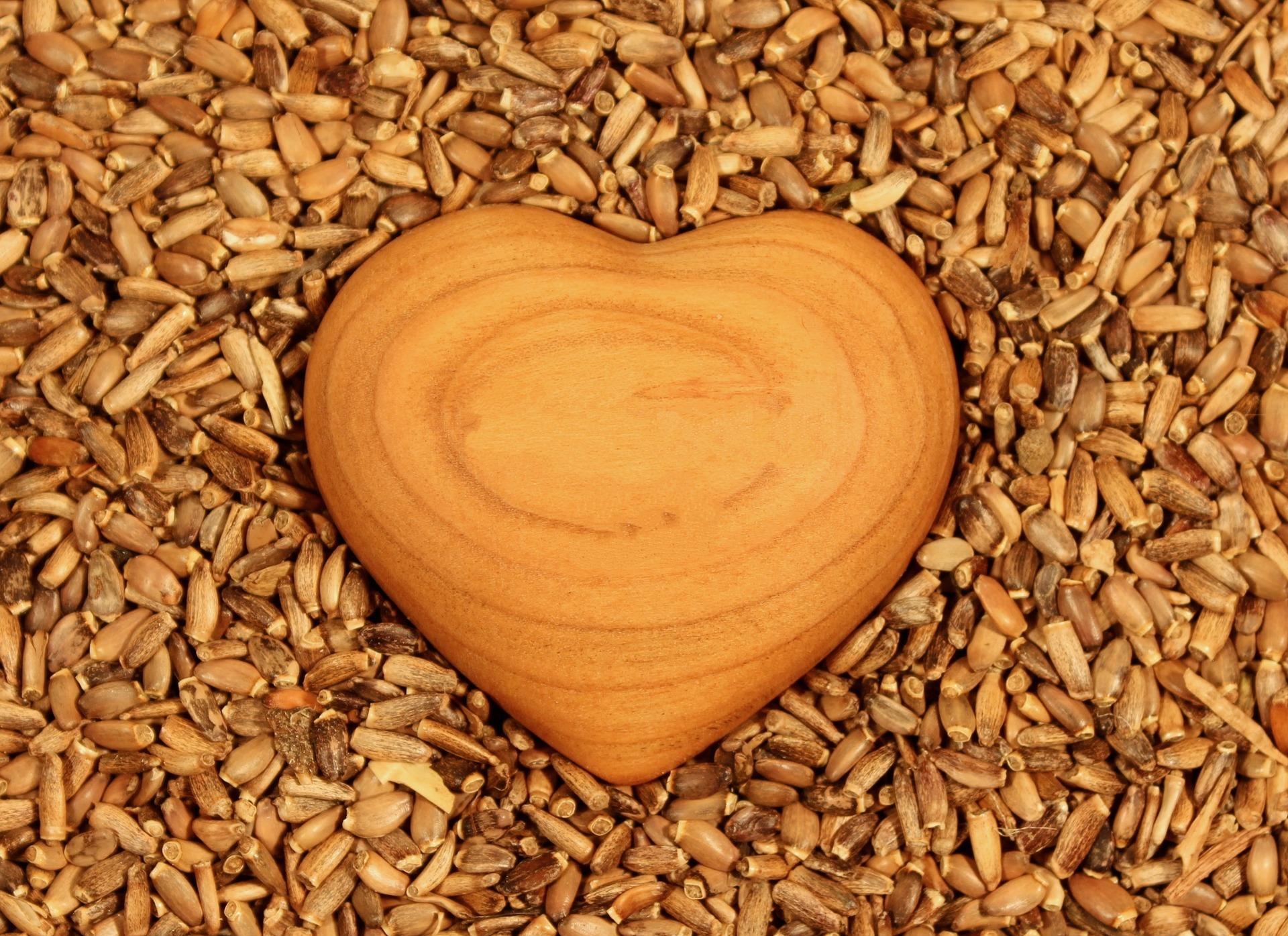 Heart 1050338 1920 Bild von klimkin auf Pixabay