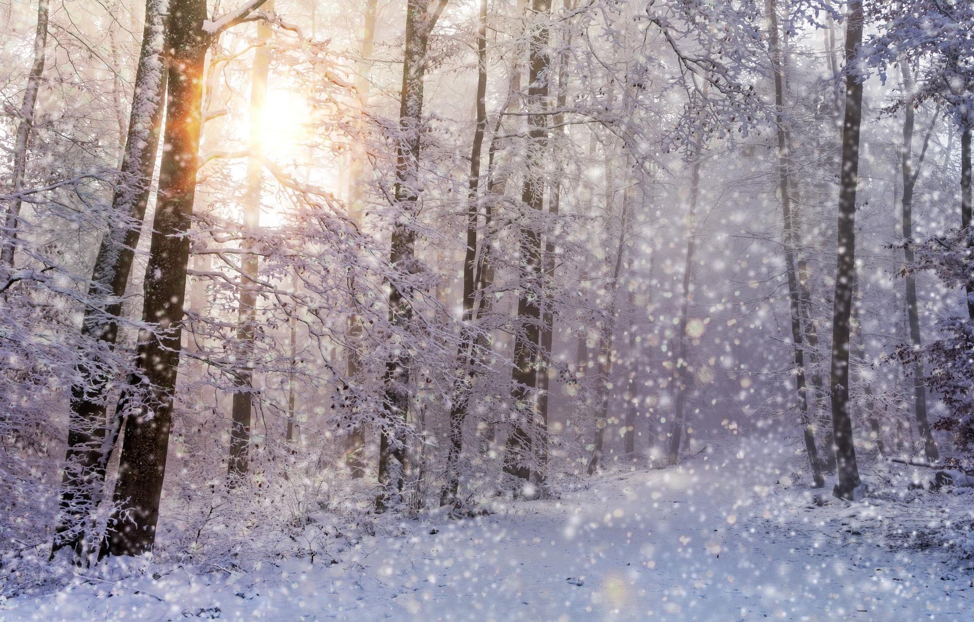 Snow joerg vieli3