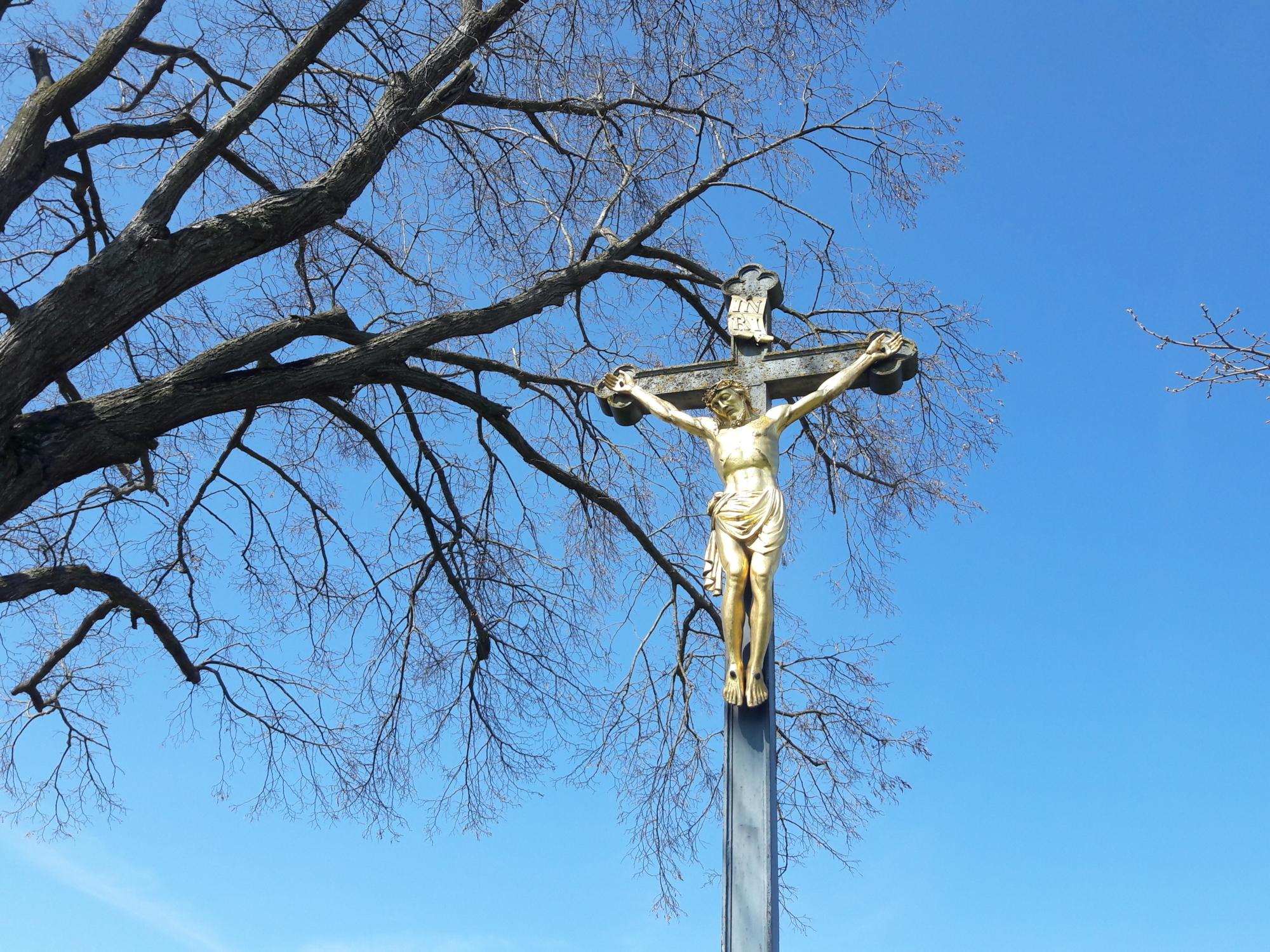 30 Sonntag Kreuz Baum