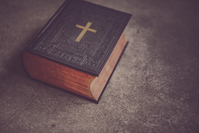 2019-bibelkreis-bibel