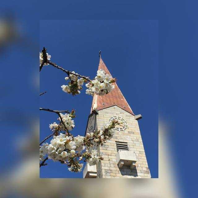 Kirchturm-St.-Vitus