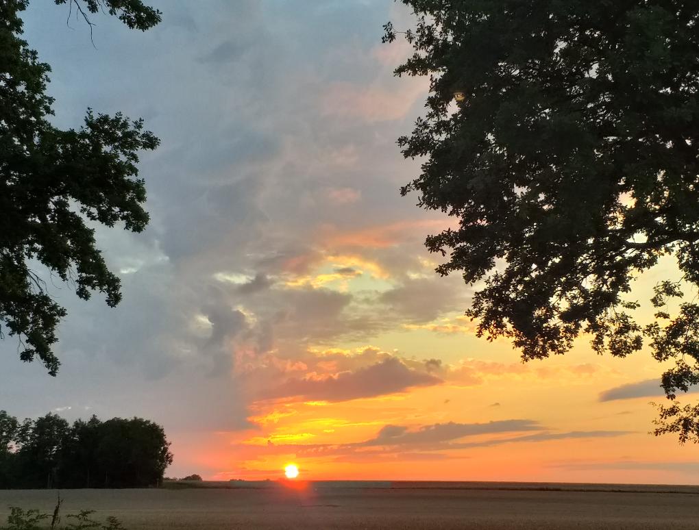 Bild Sonnenuntergang