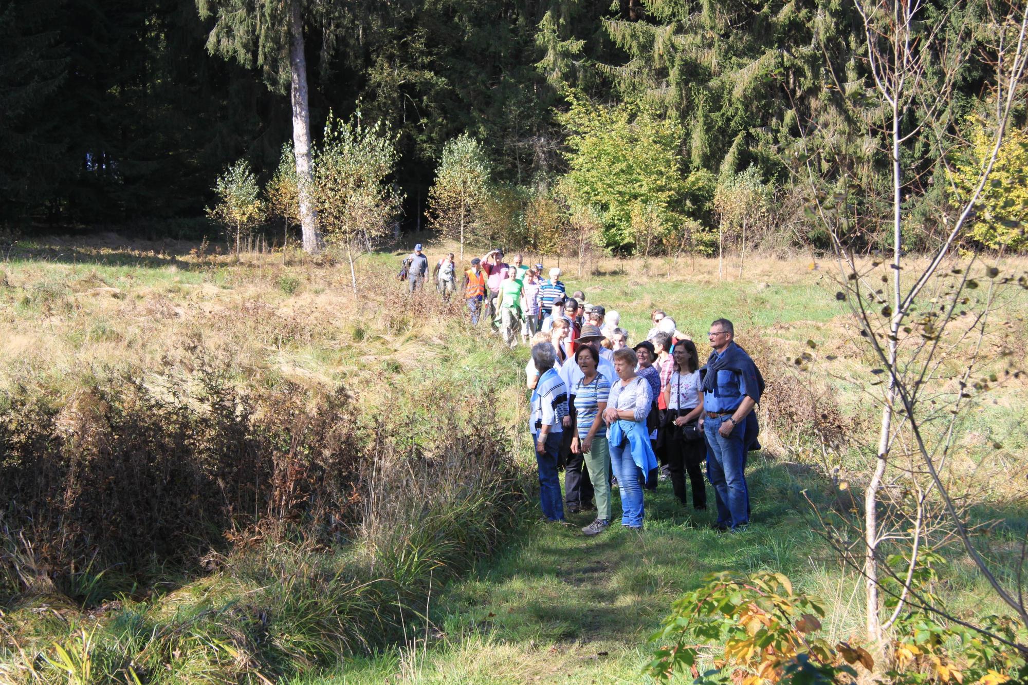 Auf-dem-Weg-nach-Nebelberg