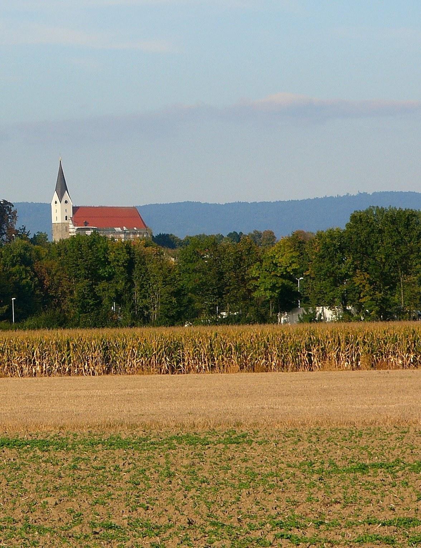 Pfarrkirche St Michael 28 Hengersberg29