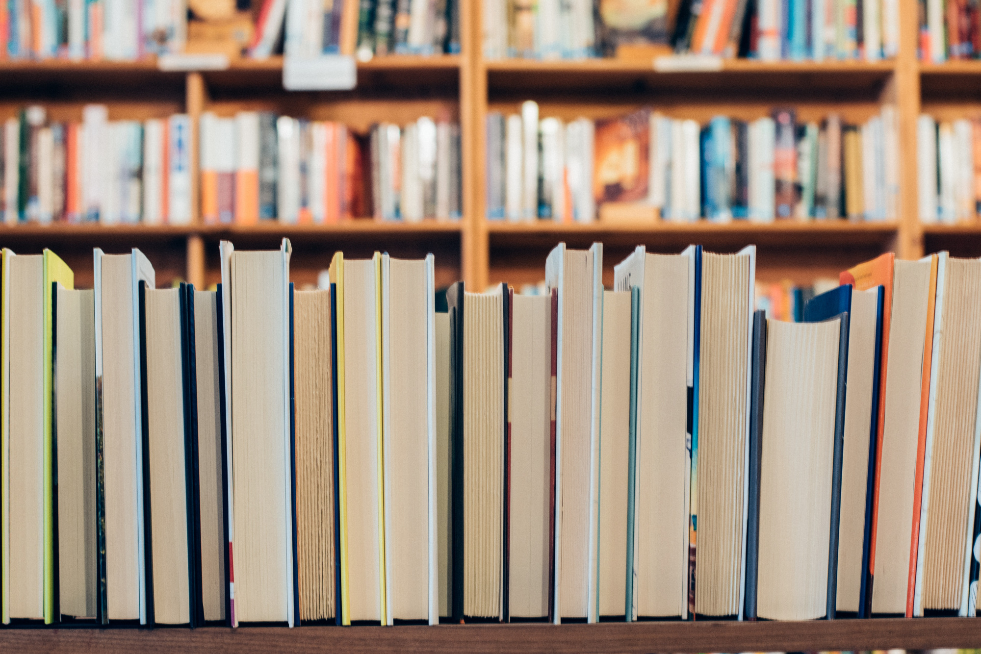 Foto Bücherei2